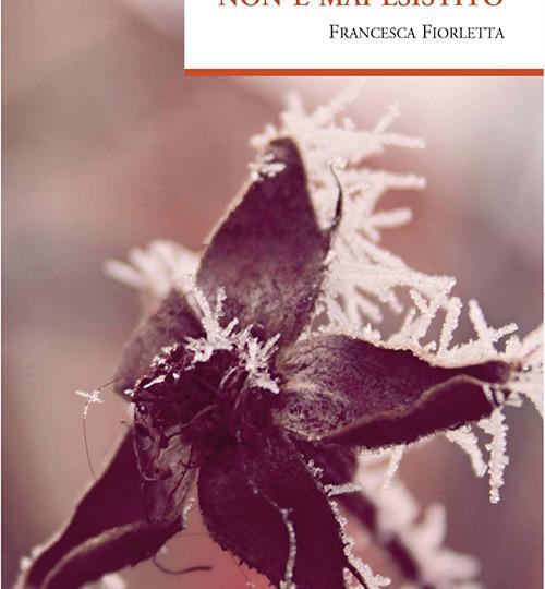 Borges non è mai esistito – Francesca Fiorletta