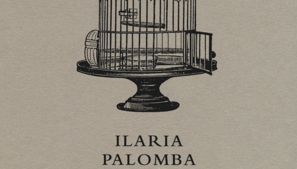Disturbi di luminosità di Ilaria Palomba