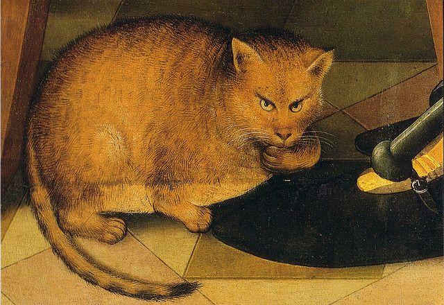 Racconto: Il gatto – Gabriele Cavallini